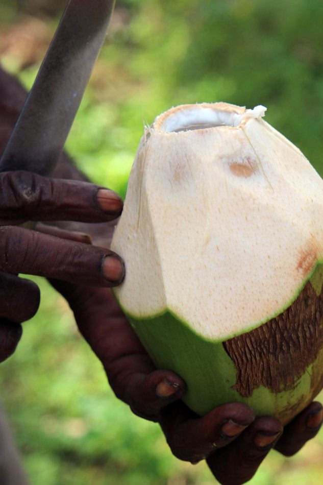 Anthony Ellis Photography: Mzungu - Fresh Coconut
