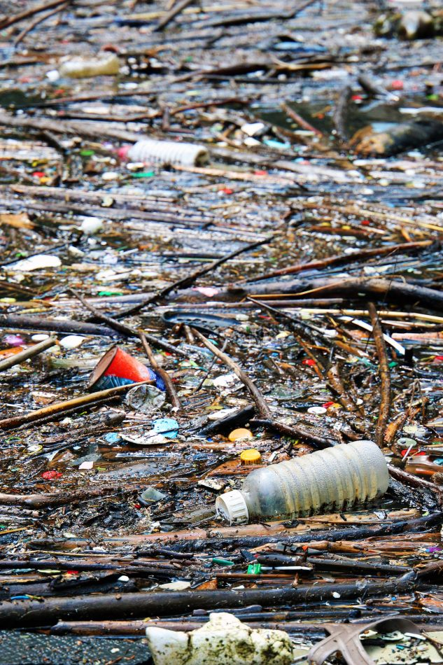 Anthony Ellis Photography: Small Sacrifices - Death by Plastic