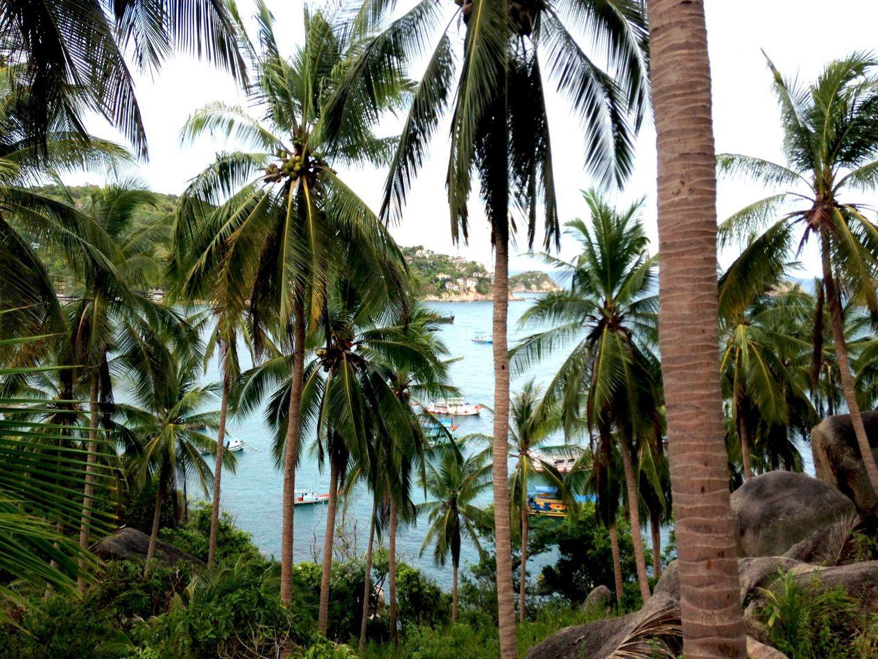Hibiscus & Nomada : Thailand - John Suwan Viewpoint, Koh Tao