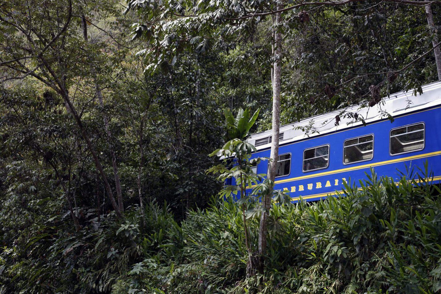 Anthony Ellis Photography: Apus - Jungle Train