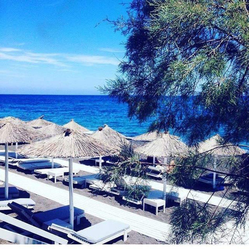 Hibiscus & Nomada : - - Kamari Beach