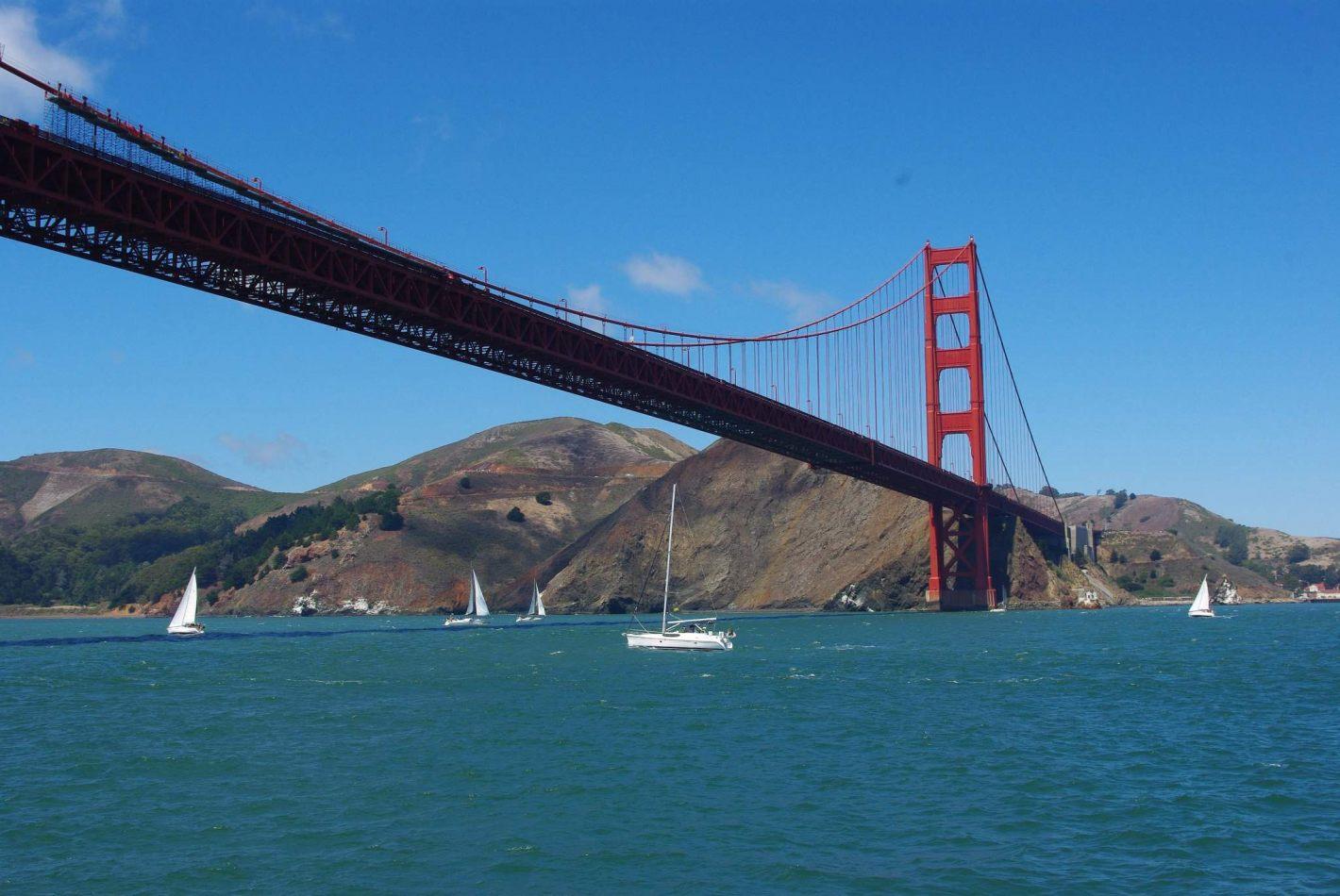 Hibiscus & Nomada : - - San Francisco