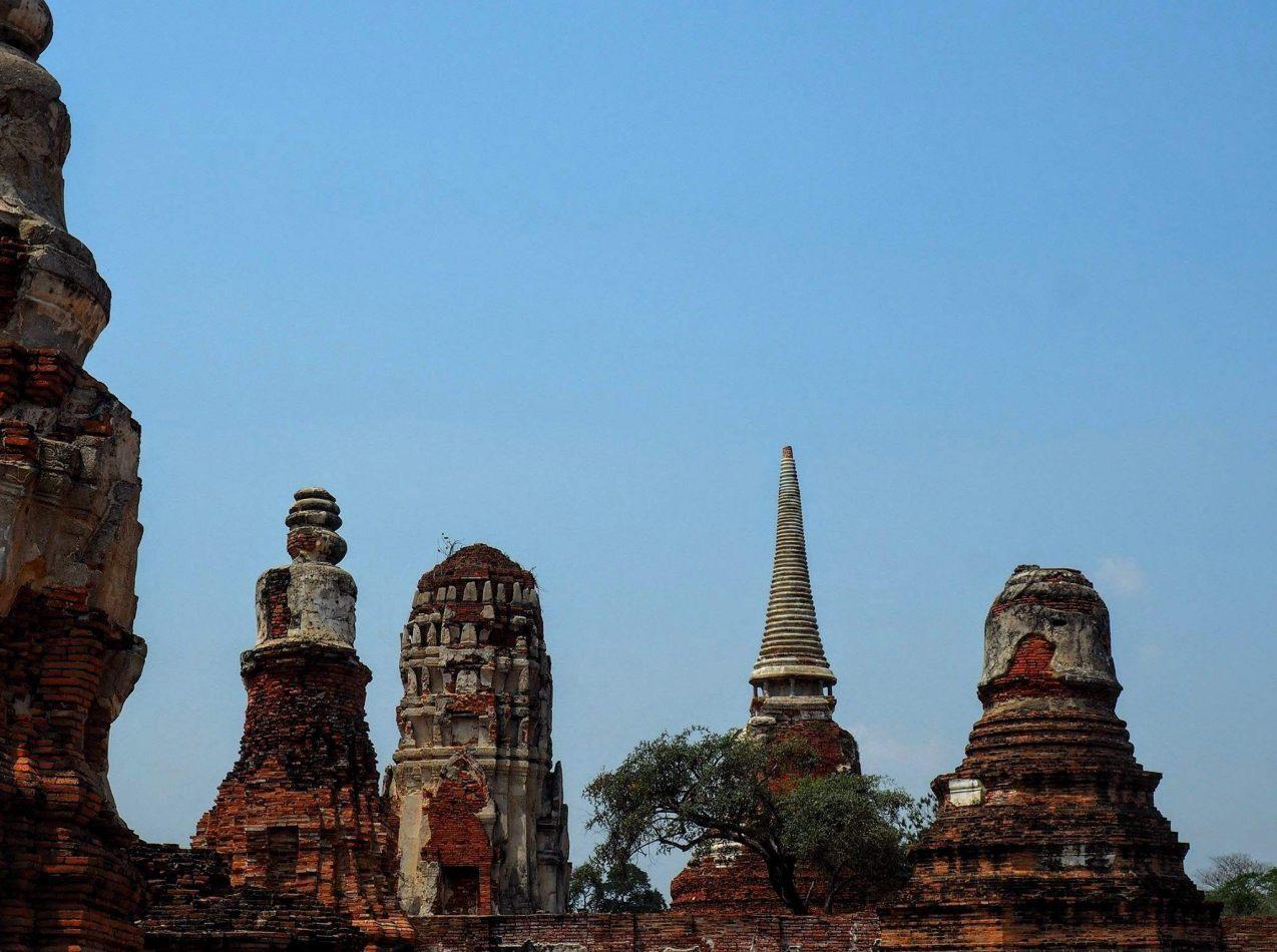 Hibiscus & Nomada : - - Phra Nakhon Si Ayutthaya