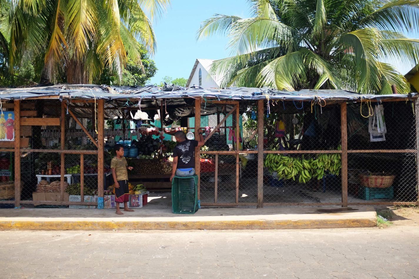 Hibiscus & Nomada : Corn Islands - Fruits & Vegetables