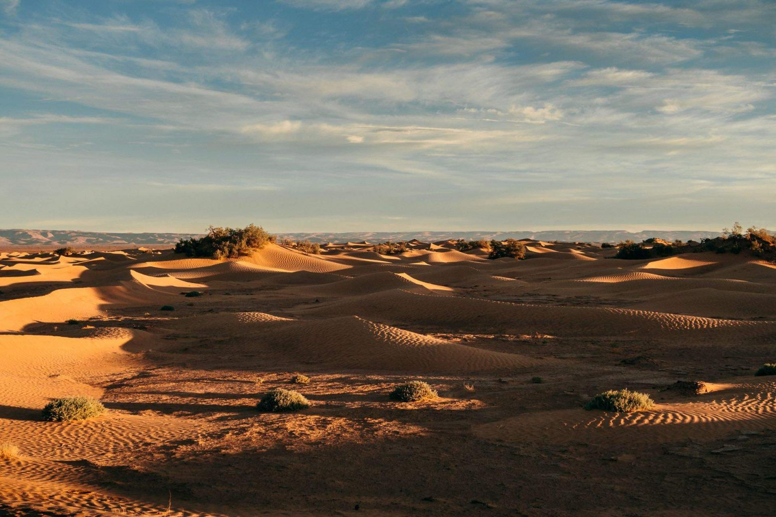 Sahara bei M hamid