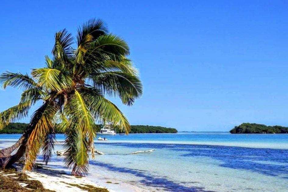 Top 5 Best Beaches In Florida on Hibiscus Island Miami