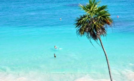 Travel Like A Local In Cancun