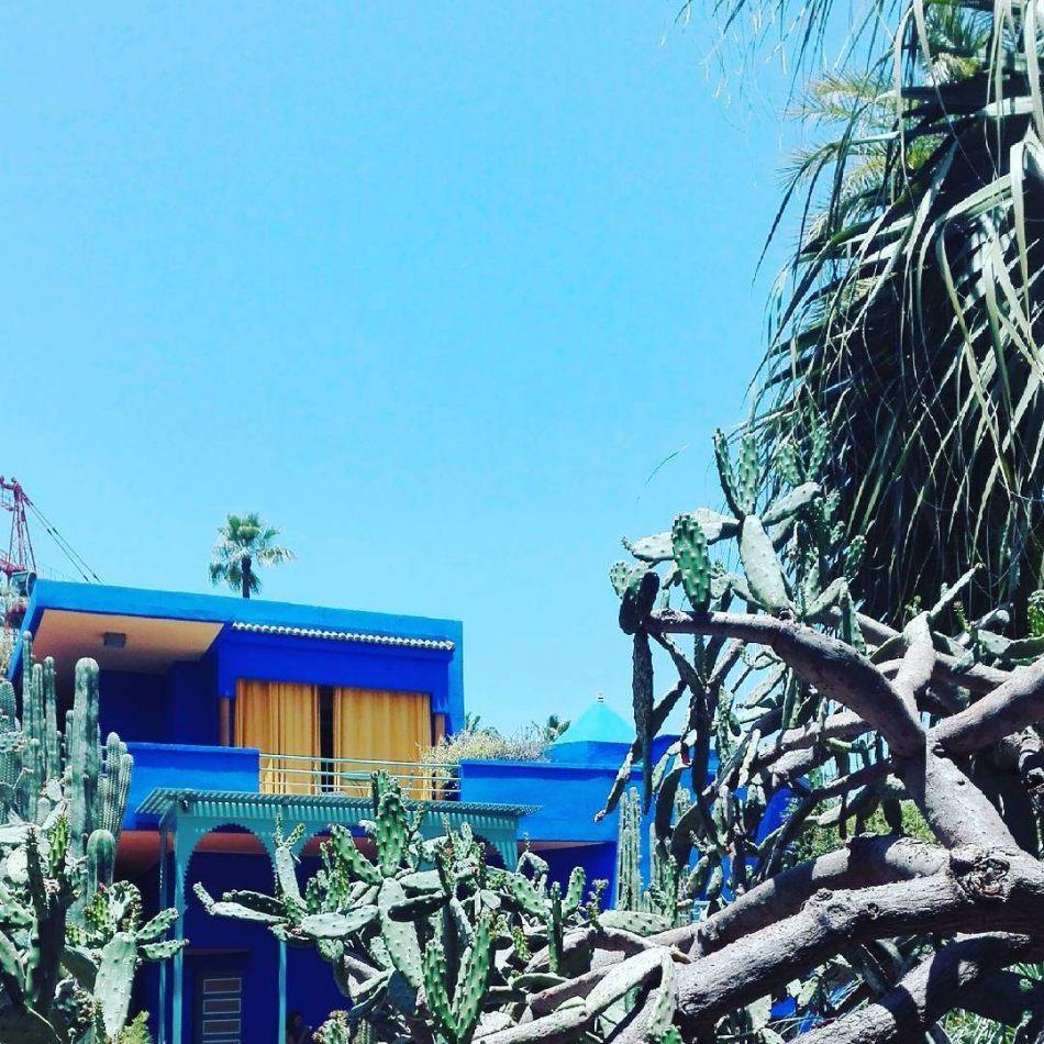 Hibiscus & Nomada : Marrakech - Majorelle Garden