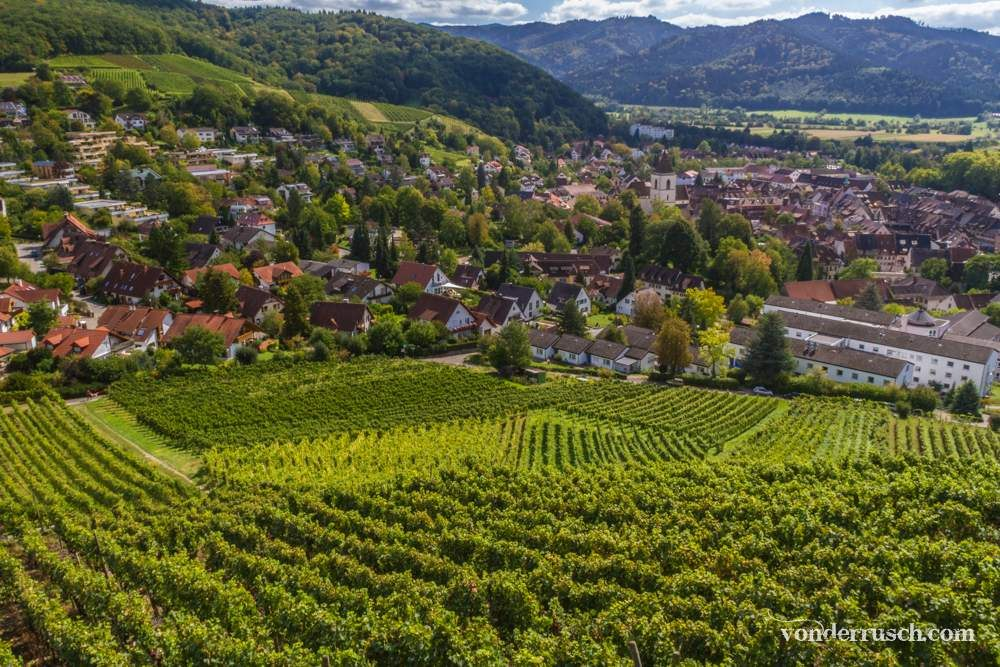 Staufen Vineyards     Black Forest Germany