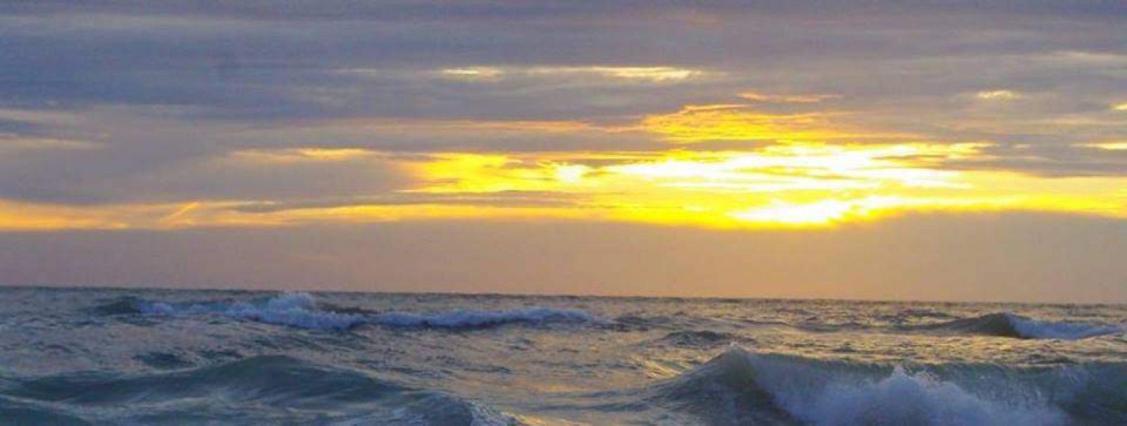 Hibiscus & Nomada : Florida - Sunrise