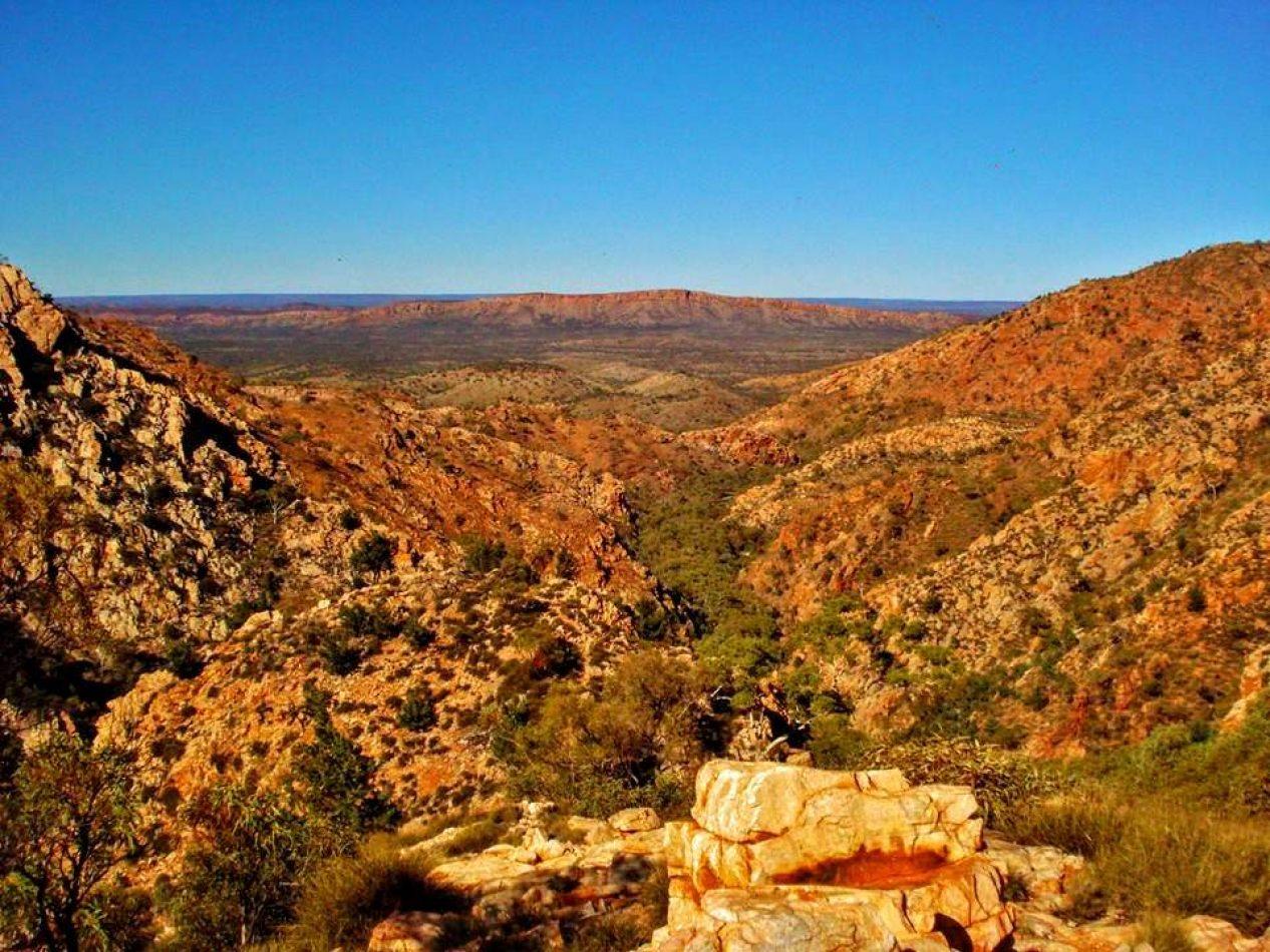 Hibiscus & Nomada : Australia - MacDonnell Ranges