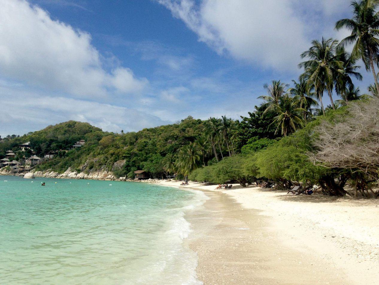 Hibiscus & Nomada : Thailand - Shark Bay, Koh Tao
