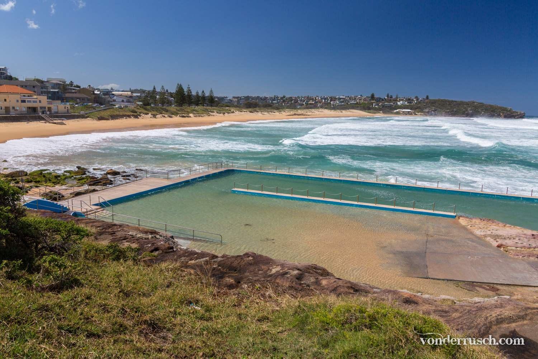 South Curl Curl Rockpool     Sydney Australia