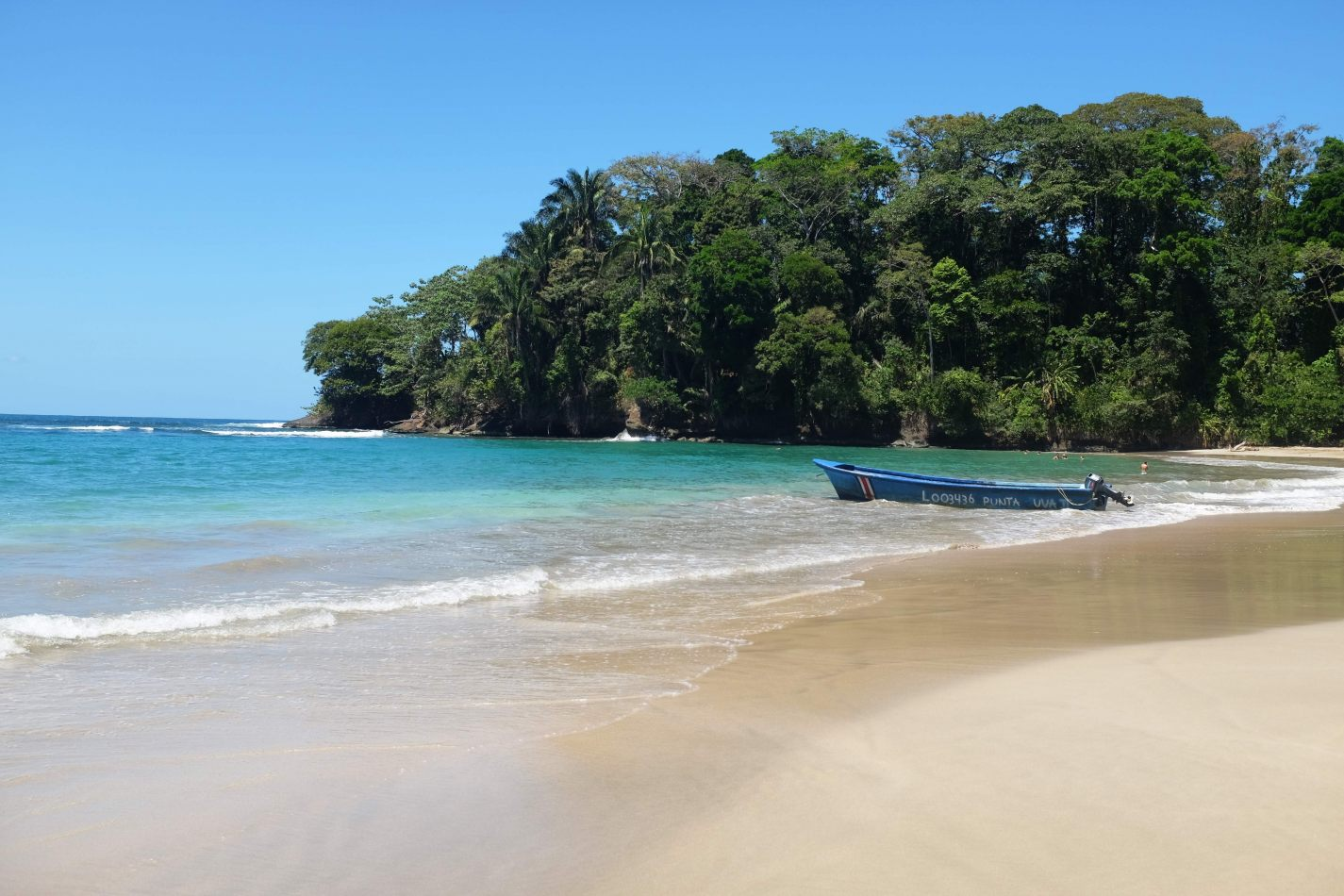 Hibiscus & Nomada : - - Punta Uva