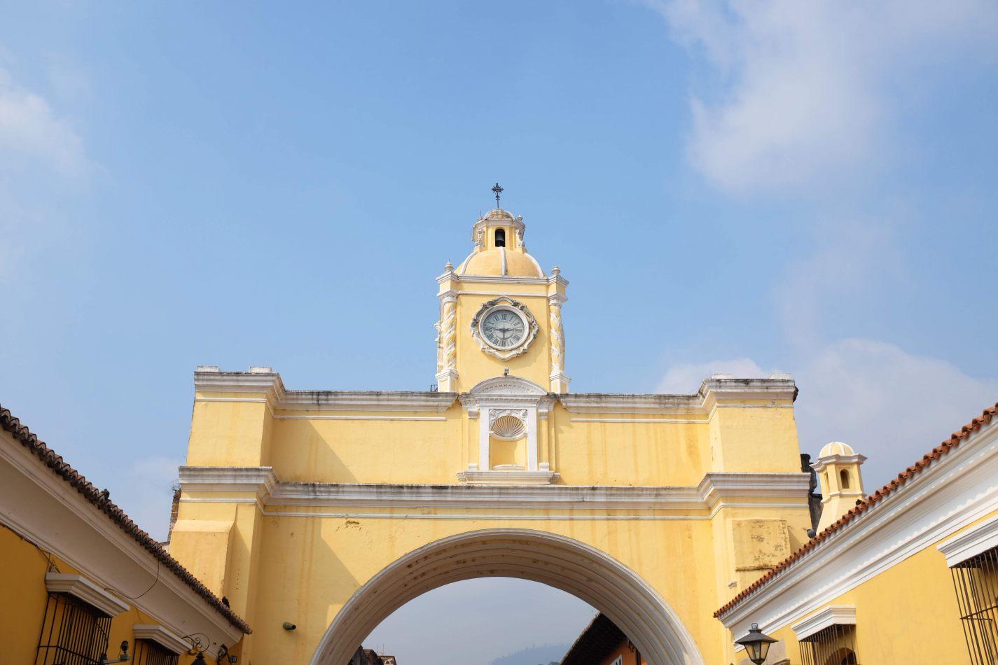 Hibiscus & Nomada : - - Antigua