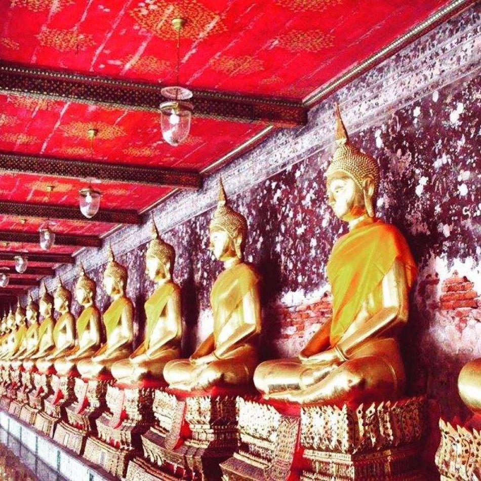 Hibiscus & Nomada : - - Wat Mahathat