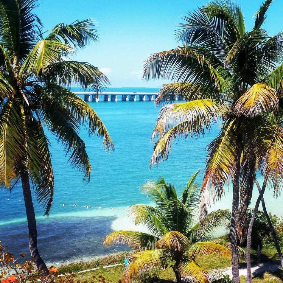 Hibiscus & Nomada : Florida - Bahia Honda State Park