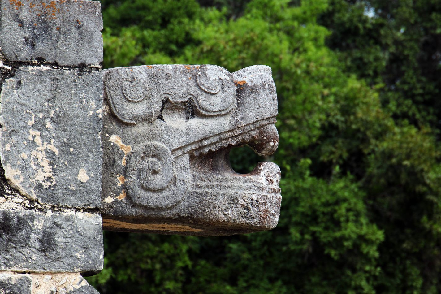 Anthony Ellis Photography: Small Sacrifices - The Feathered Serpent