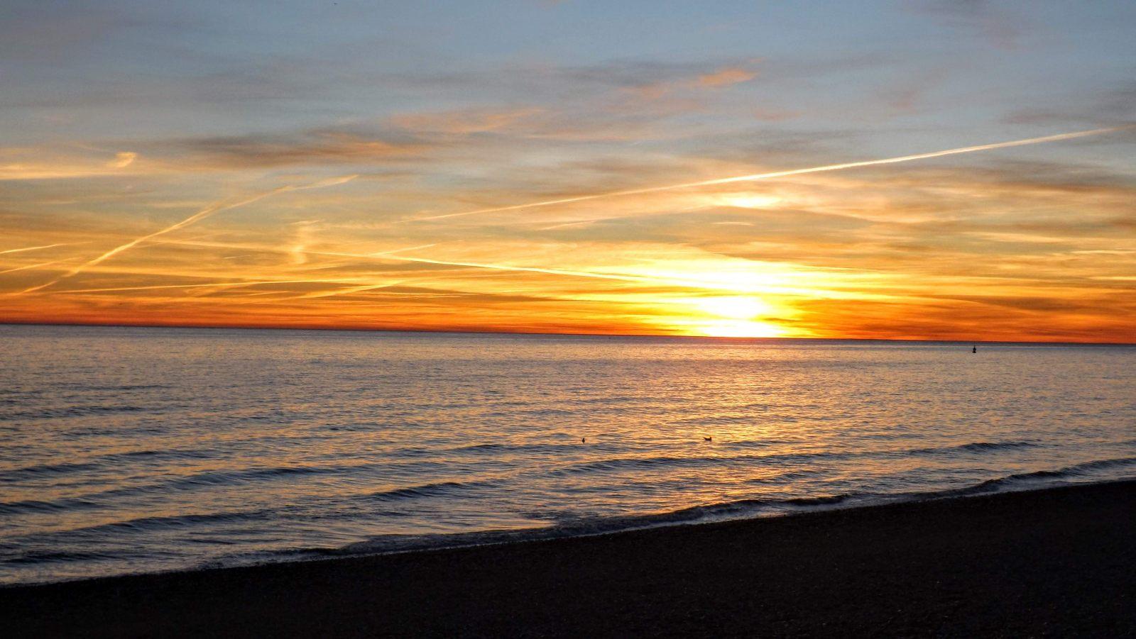 Hibiscus & Nomada : Brighton - Sunset