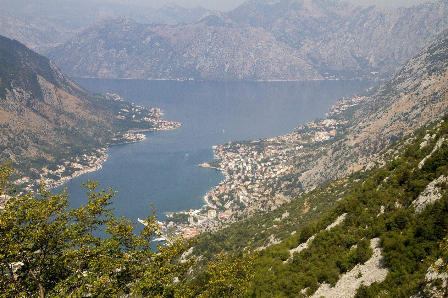 Storvandre: Montenegro