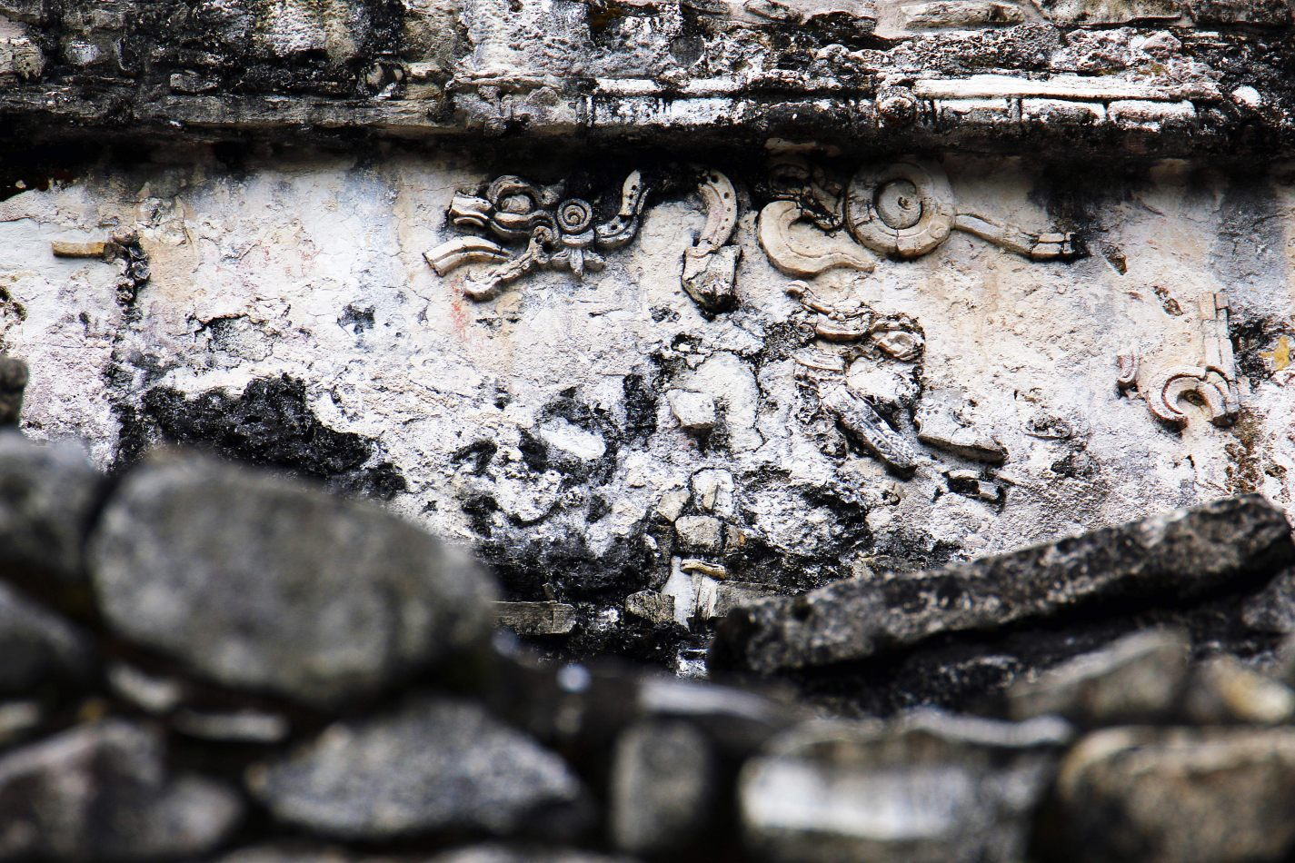 Anthony Ellis Photography: Small Sacrifices - There Was Dragons