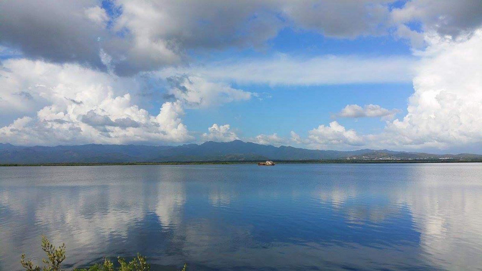 Hibiscus & Nomada : - - Peninsula Ancon