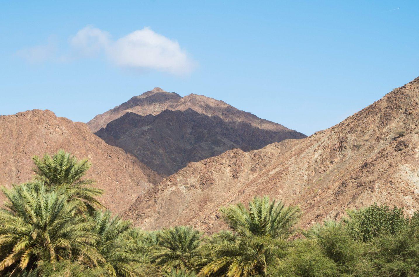 Hibiscus & Nomada : - - Wadi Bani Khalid