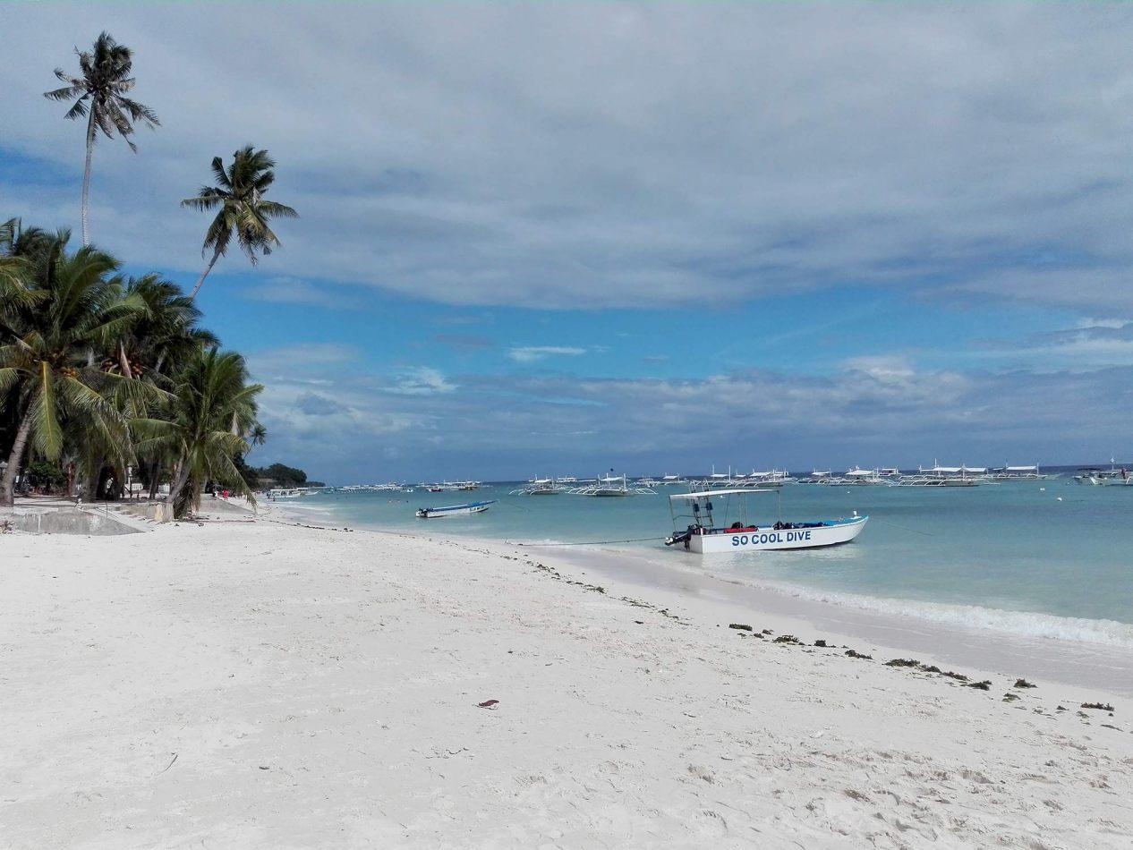 Hibiscus & Nomada : - - Alona Beach, Bohol