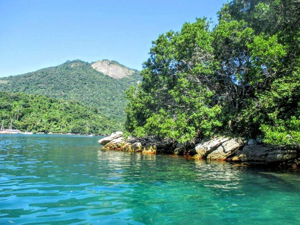 Hibiscus & Nomada : - - Ilha Grande