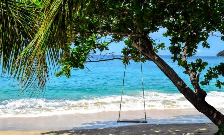 Island Paradise St Vincent The Grenadines and Fiji