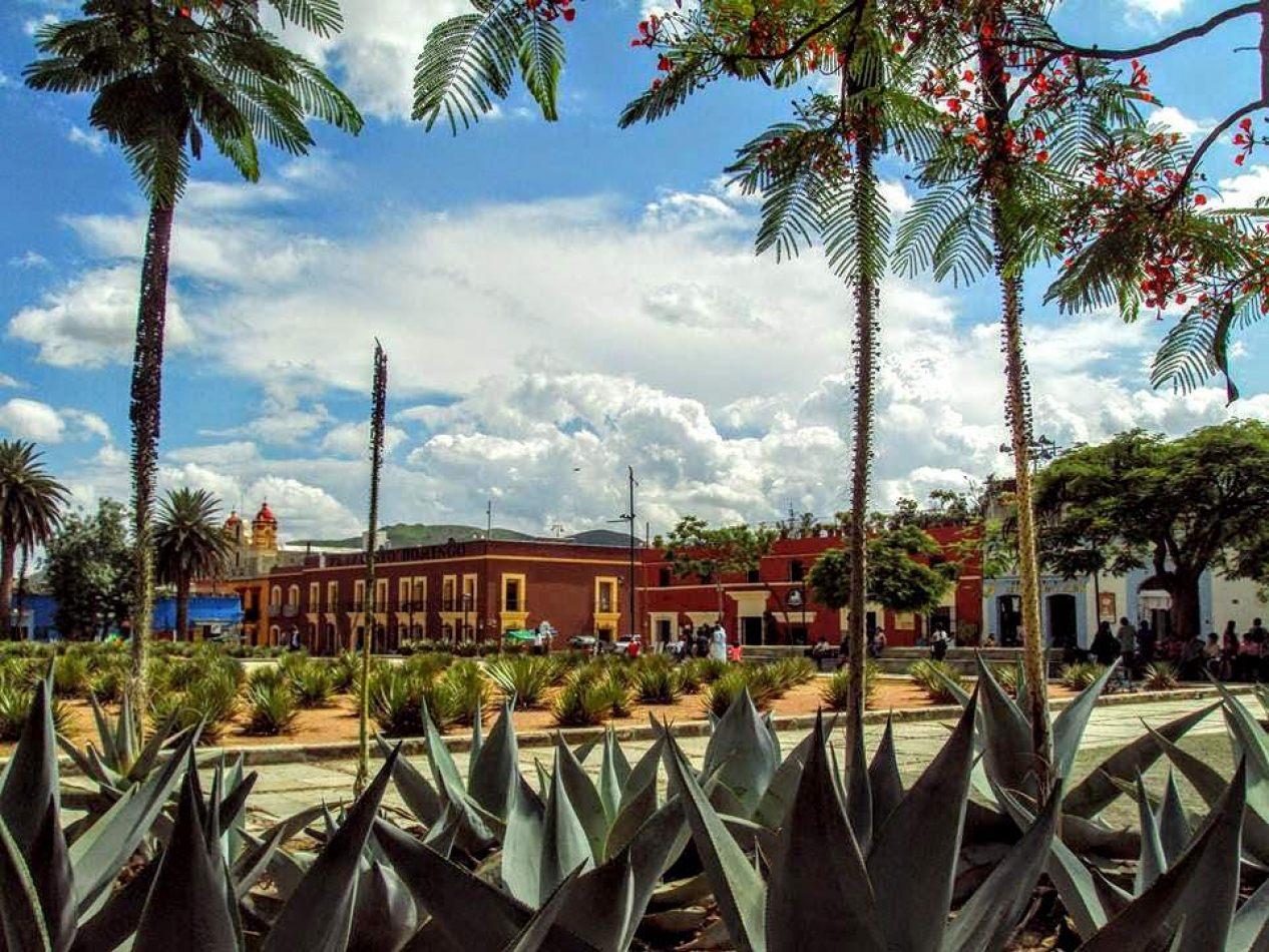 Hibiscus & Nomada : - - San Cristobal de las casas