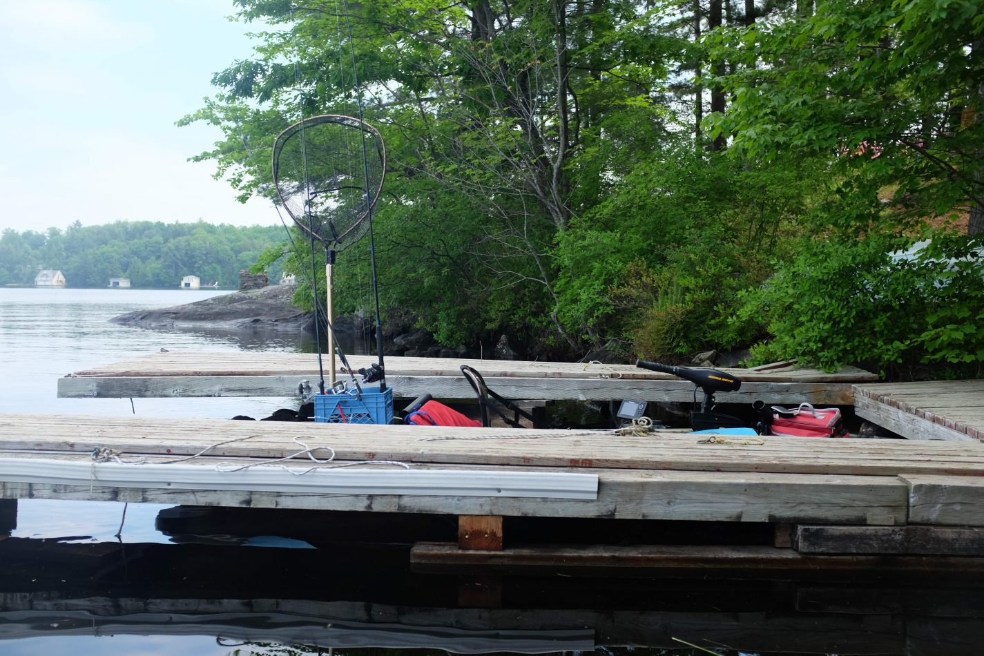Hibiscus & Nomada : - - Fishing on Lake Muskoka