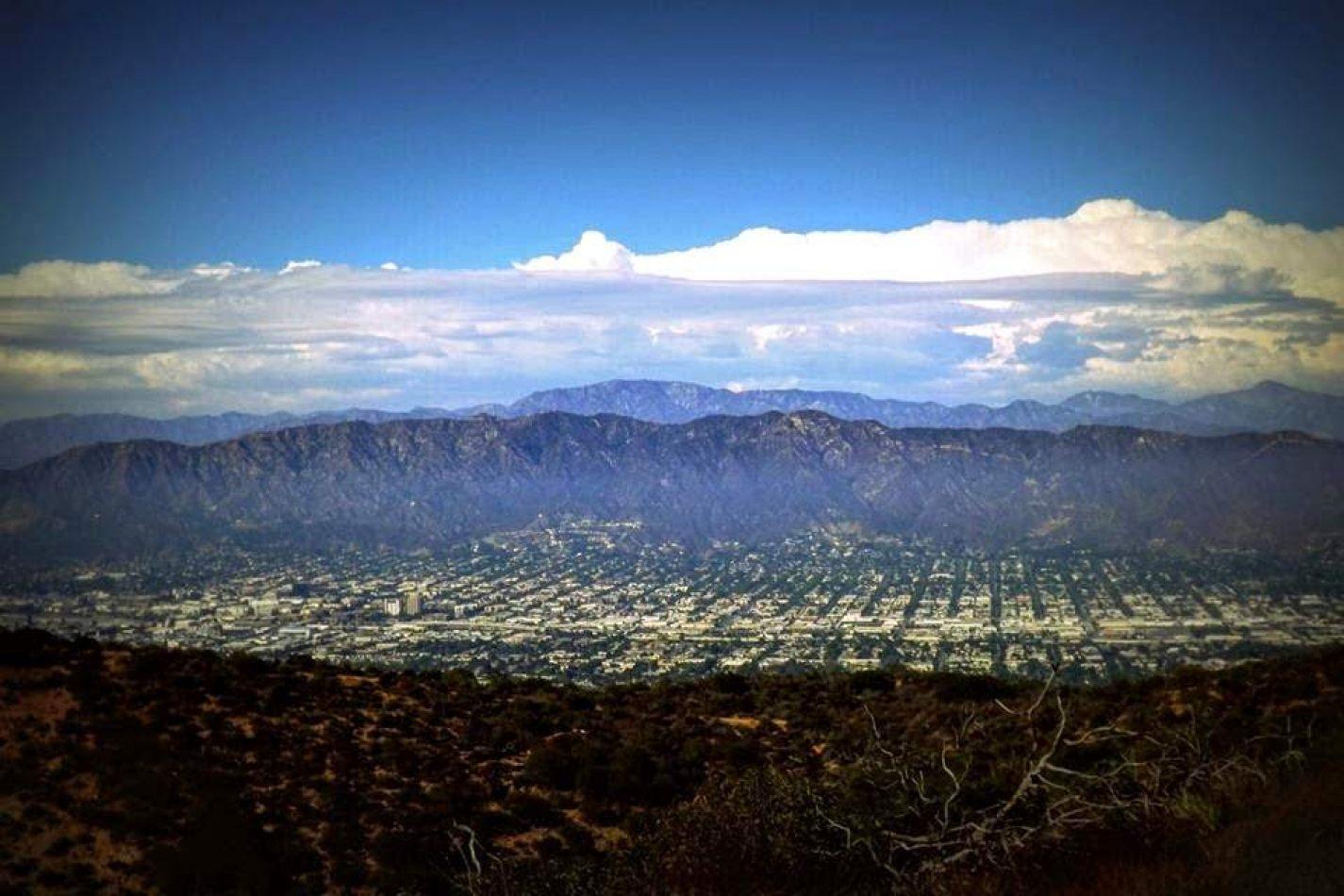 Hibiscus & Nomada : - - Los Angeles