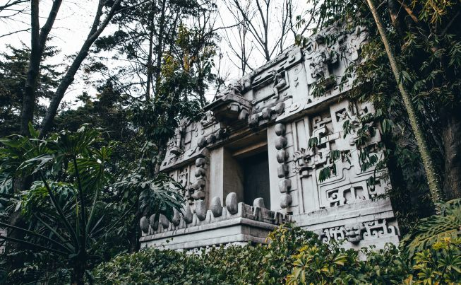 Eternal Spring and Infinite Discovery in Mexico City