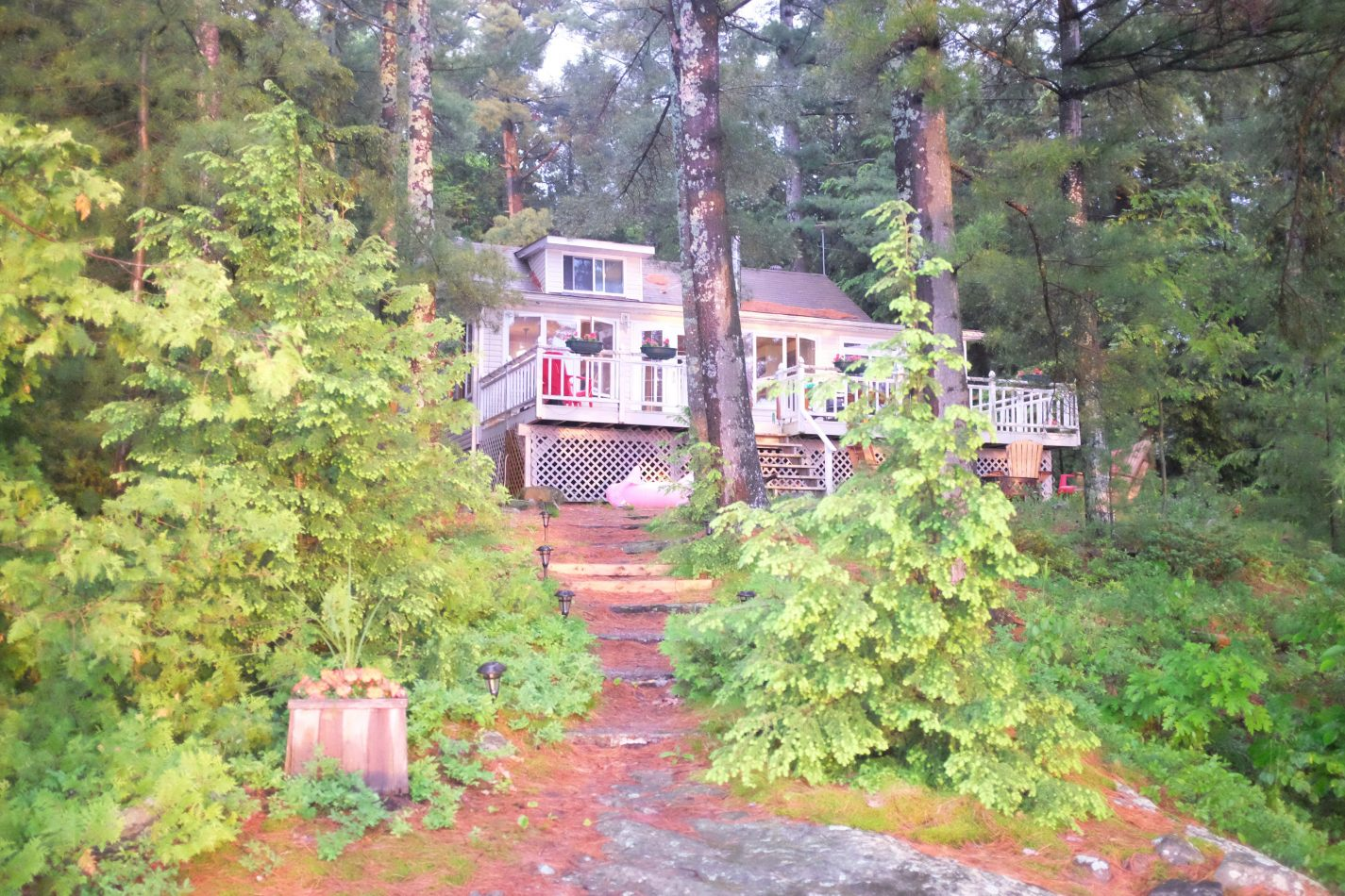 Hibiscus & Nomada : - - Cottage on Lake Muskoka