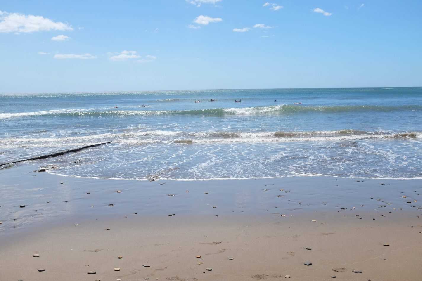 Hibiscus & Nomada : - - Surfers