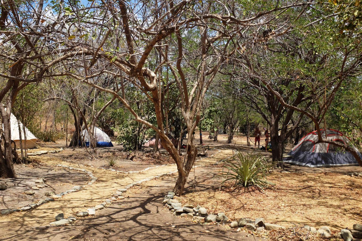 Hibiscus & Nomada : - - Camping La Luna