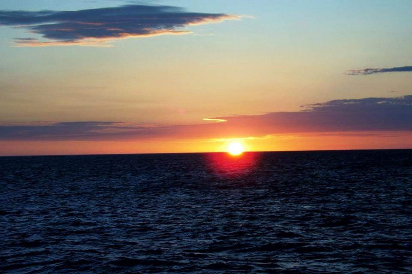 Hibiscus & Nomada : - - Clearwater Beach Sunset