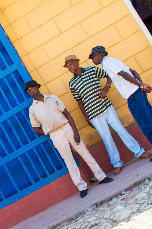 Hibiscus & Nomada : - - Trinidad