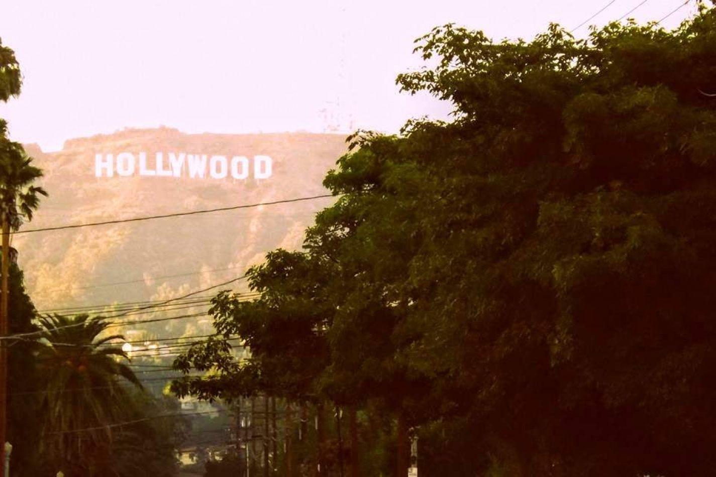 Hibiscus & Nomada : - - Hollywood