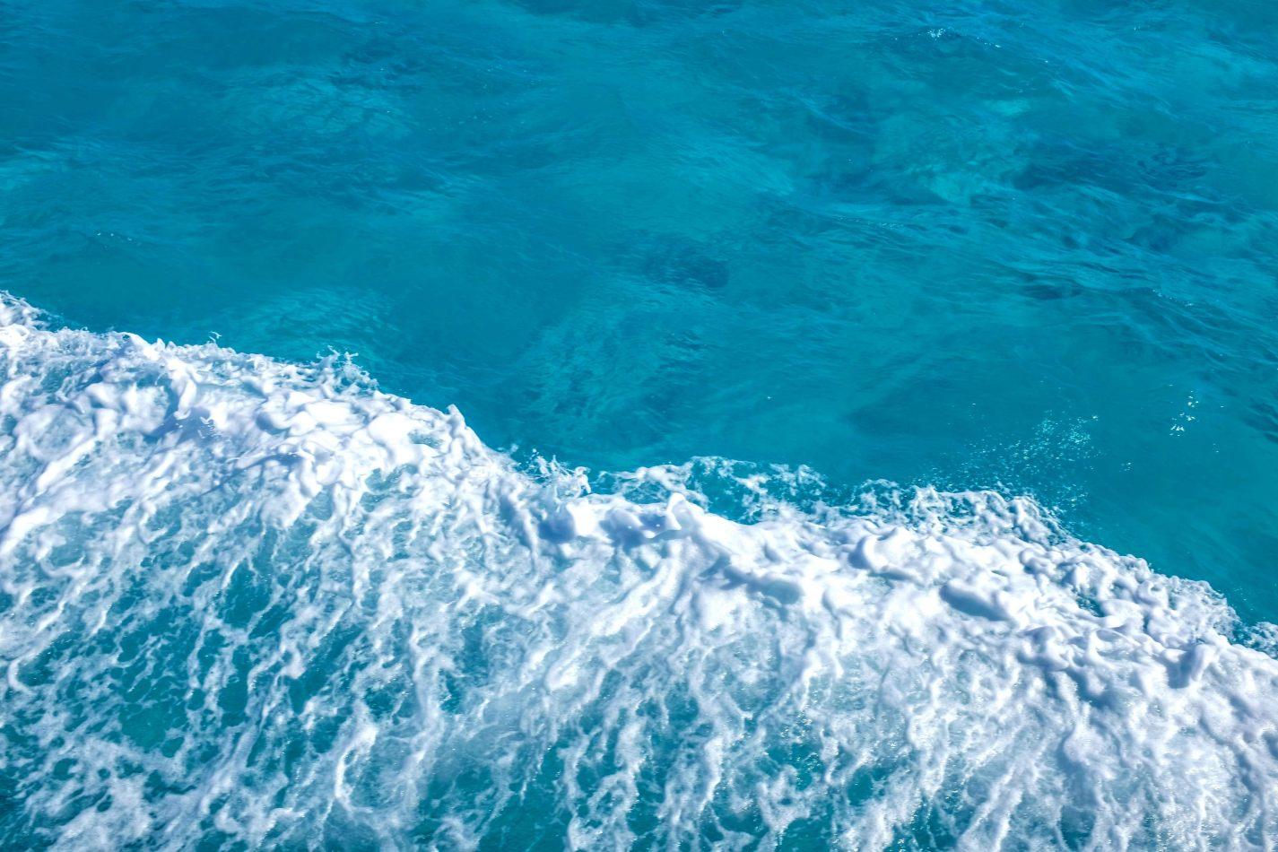 Hibiscus & Nomada : - - Ferry to Isla Mujeres