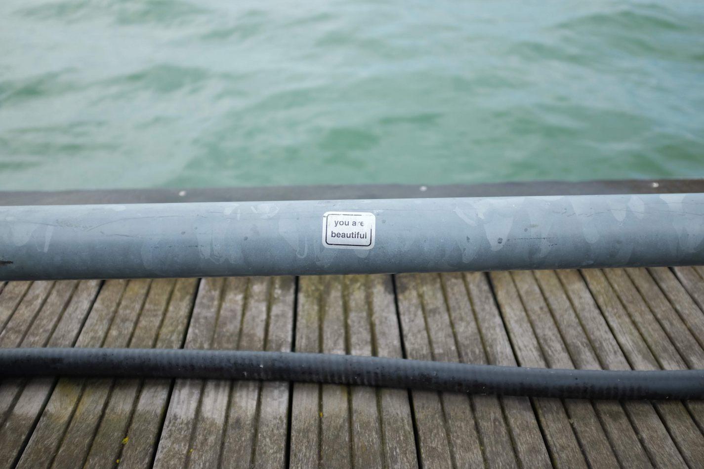 Hibiscus & Nomada : - - Waterfront Toronto