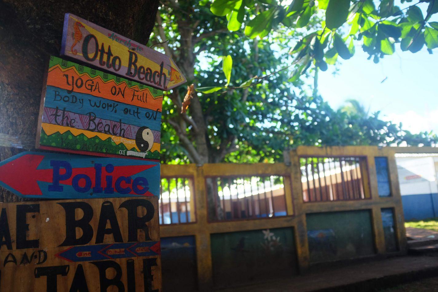Hibiscus & Nomada : - - Otto Beach