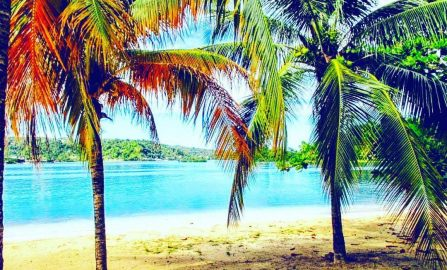 5-Day Travel Itinerary in Jamaica