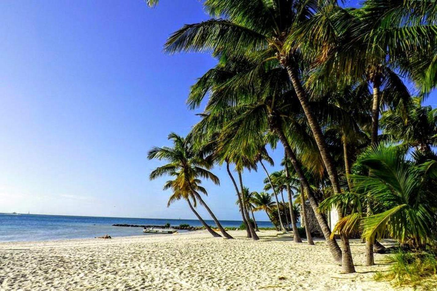 Hibiscus & Nomada : - - Key West