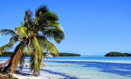 Top 5 Best Beaches in Florida