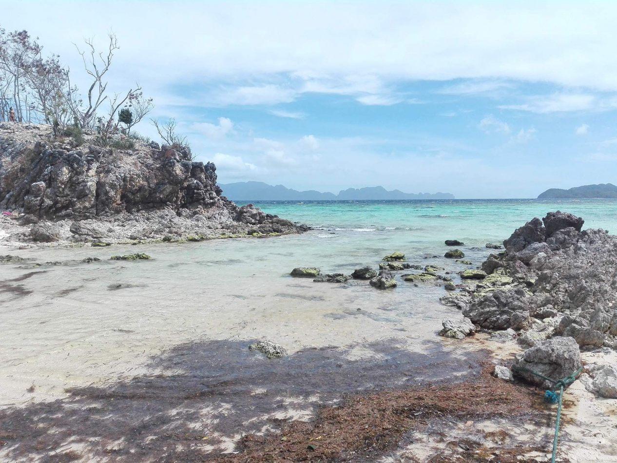 Hibiscus & Nomada : - - Bulog Dos Island, Coron