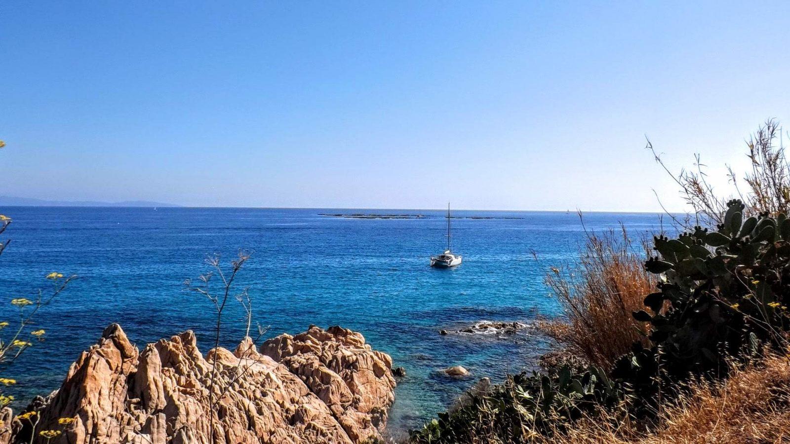 Hibiscus & Nomada : - - Marinella Beach