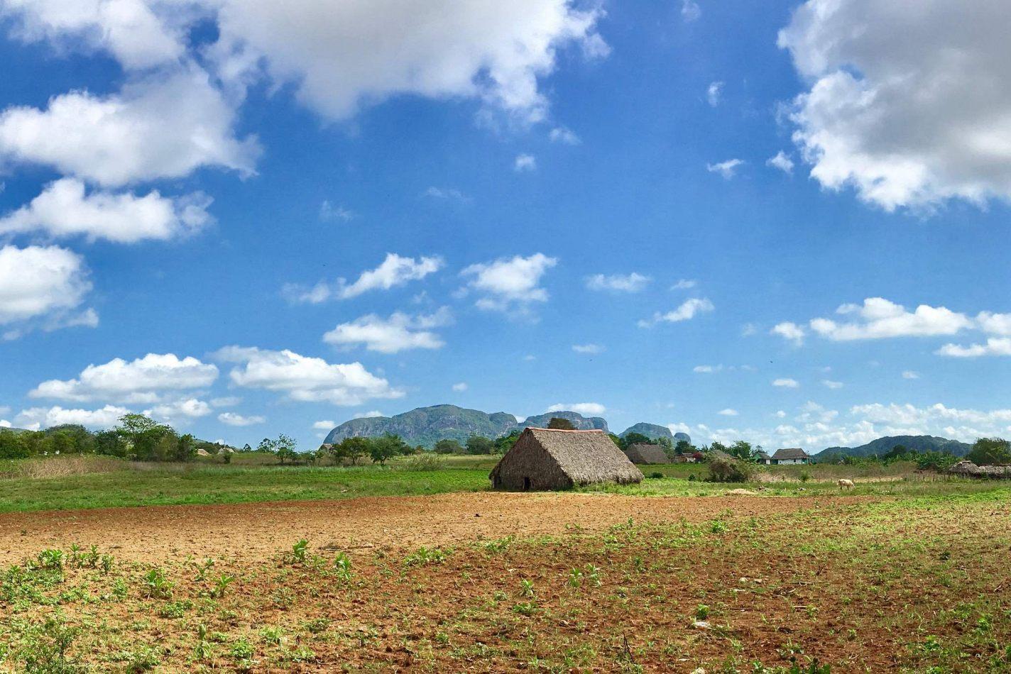 Hibiscus & Nomada : Cuba - Viñales
