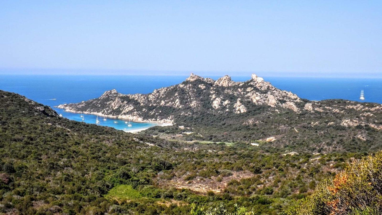 Hibiscus & Nomada : - - Roccapina Viewpoint